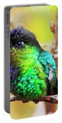 Fiery Throated Hummingbird Portable Battery Charger