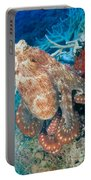 Fiji, Day Octopus Portable Battery Charger