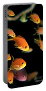 Fiji, Reef Scene Portable Battery Charger