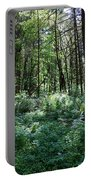 Filtered Forest Sunlight In Oregon Portable Battery Charger
