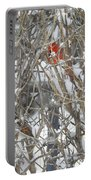 Find The Birds Portable Battery Charger