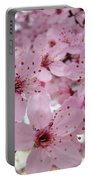 Fine Art Prints Spring Pink Blossoms Trees Canvas Baslee Troutman Portable Battery Charger
