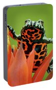 Fire-bellied Toad Portable Battery Charger