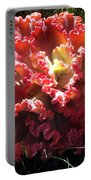Fire Color Succulent. Curly Plant, Exotic Portable Battery Charger