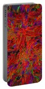 Fire Crystals Portable Battery Charger