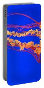 Fire In Water Portable Battery Charger