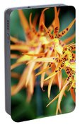 Fire Orchid Portable Battery Charger