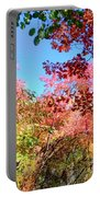 Fire Top Trees Portable Battery Charger