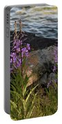 Fire Weed Looking At Lake Superior Portable Battery Charger