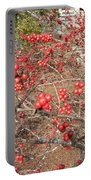 Firethorn Bushes Portable Battery Charger