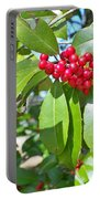 Firethorn Tree Portable Battery Charger