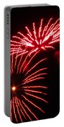 Firework Gerbera Daisies Portable Battery Charger