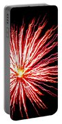 Firework Spider Mum Portable Battery Charger