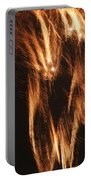 Fireworks A Different Perspective Five Portable Battery Charger