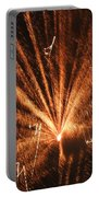 Fireworks A Different Perspective Seven Portable Battery Charger