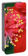 Fireworks - Hibiscus Portable Battery Charger