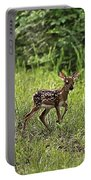 First Baby Fawn Of The Year Portable Battery Charger