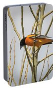 First Baltimore Oriole Of The Year  Portable Battery Charger