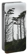 First Line Trees Along The Pacific Ocean Portable Battery Charger