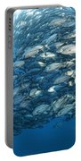 Fish Watch Portable Battery Charger