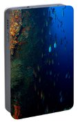 Fish Waterfall Portable Battery Charger