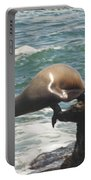 Fishing Sea Lion Portable Battery Charger