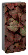 Fittonia Portable Battery Charger