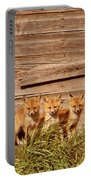 Five Fox Kits By Old Saskatchewan Granary Portable Battery Charger