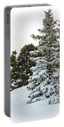 Flag And Snowy Pines Portable Battery Charger