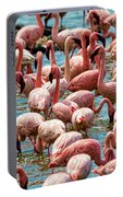 Flamboyance Of Flamingos Portable Battery Charger