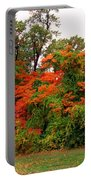 Flamboyant Forest Portable Battery Charger