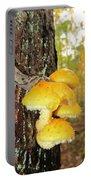 Flame Cap Mantle Slug Portable Battery Charger