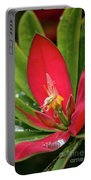 Flame Of Jamaica Portable Battery Charger