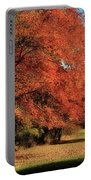 Flame Trees Portable Battery Charger