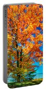 Flaming Maple - Paint Portable Battery Charger