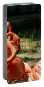 Flamingo Colony Portable Battery Charger