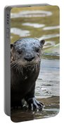 Flamingo Gardens - Curious Otter Portable Battery Charger