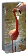 Flamingo II Portable Battery Charger