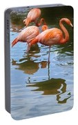 Flamingo Reflections Portable Battery Charger