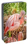 Flamingo2 Portable Battery Charger