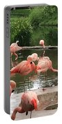 Flamingoes Looking Oh So Pretty  Portable Battery Charger