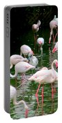 Flamingos 6 Portable Battery Charger