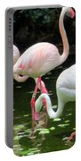 Flamingos 8 Portable Battery Charger