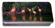 Flamingos II Portable Battery Charger