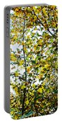 California Glory At Pilgrim Place In Claremont-california  Portable Battery Charger