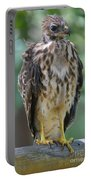 Fledgling Hawk Portable Battery Charger