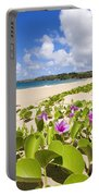 Fleming Beach Portable Battery Charger