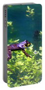 Floating Frog Portable Battery Charger