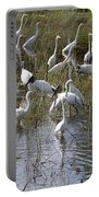 Flock Of Different Types Of Wading Birds Portable Battery Charger