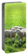 Flock Of Sheep Standing In A Field Waiting Portable Battery Charger